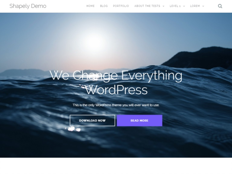 Shapely WordPress Theme in Free Photography WordPress Themes