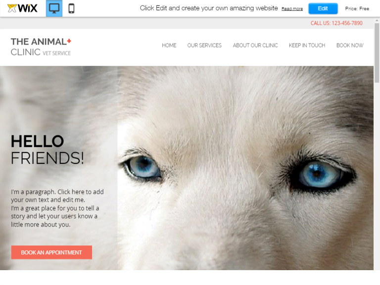 Animal Clinic template